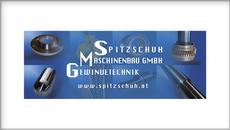 Spitzschuh