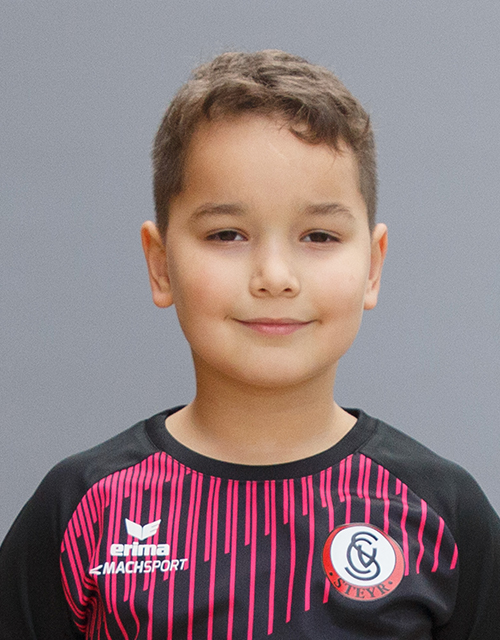 Mehmet Ali Disli